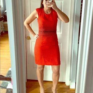 Red Polka Dot Suiting Dress
